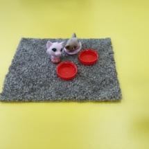 Тарелки для животных на липучках